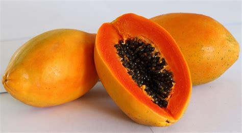 Kesehatan Pencernaan manfaat buah pepaya untuk kesehatan dan kecantikan