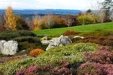 The Garden In Bloom Picture Of The Blue Mountains The Blue Mountains Botanic Garden Mount Tomah