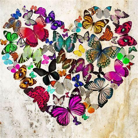 imagenes de mariposas juntas s 237 mbolos del feng shui mariposas para el amor 2018
