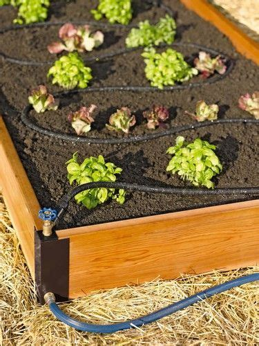 self watering raised bed 1000 ideas about irrigation on pinterest drip