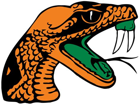 a m school colors florida a m rattlers and rattlers