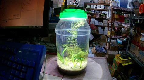 aquascape diy diy nano aquascape youtube