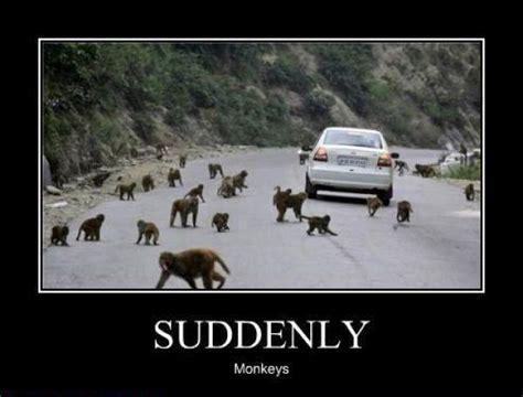 Suddenly Meme - suddenly ii 08 01 2011 dat base
