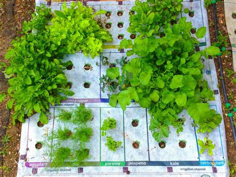 In The Garden Mat by How To Grow Your Own Food Garden With A Template Gardens