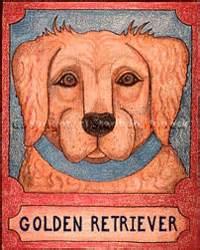 sarasota golden retriever puppies breed profile golden retriever sarasota