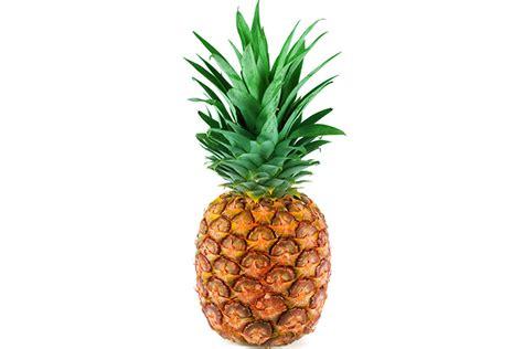 6 fruits in ᑐbaby fruit size comparison week week by week ga53