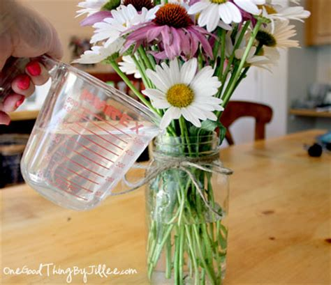 How To Make Flowers In A Vase Last Longer by 16 Ingenious Uses For Ordinary Household Vinegar One