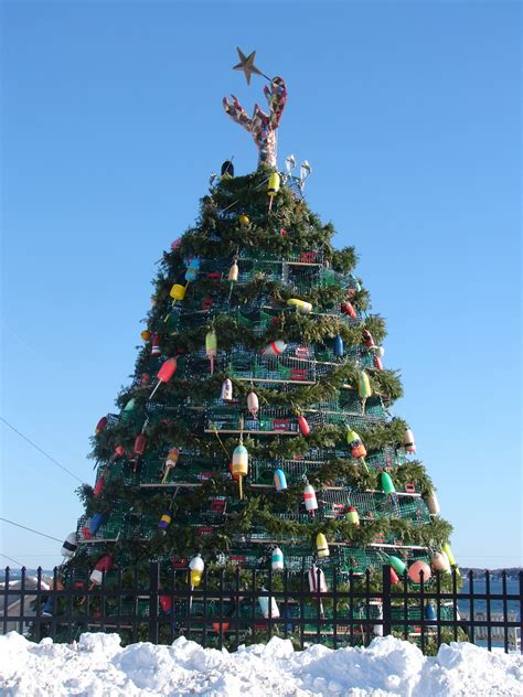 maine xmas lobster discovery channel to rockland s lobster trap tree midcoast bangor daily news bdn maine