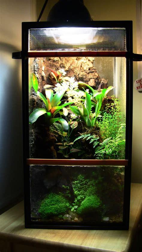 Lu Akuarium Diy 84 best terrarium vivarium paludarium images on