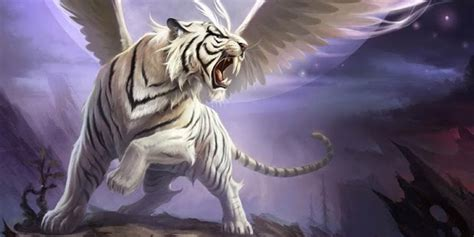 Flying Tiger Store Flying Tiger Android Apps On Google Play