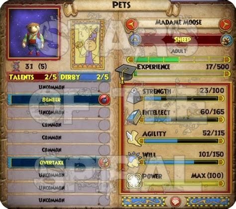 Wizard101 20 Dollar Gift Card - wizard101 gifting gold gift ftempo