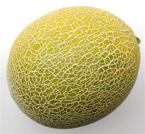 Melon Sweet free image of sweet melon honeydew melon or spanspek