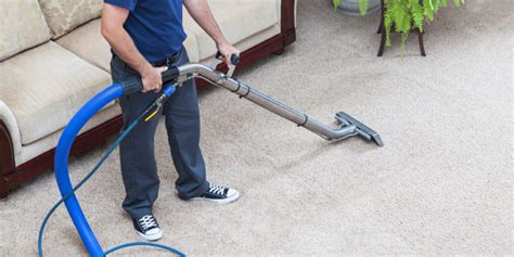upholstery cleaning brooklyn carpet cleaning brooklyn ny reasons to hire
