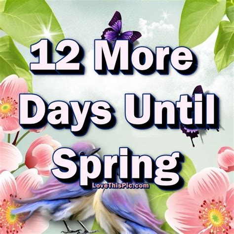 12 days till 12 more days until pictures photos and images for