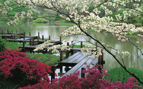 Flower Garden In Japan Wallpaper Flower Pond Park Pier Japan Desktop Wallpaper 187 Nature 187 Goodwp