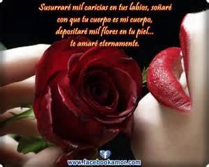 bonitas de rosas rojas con frases de amor imagenes de amor facebook im 225 genes bonitas de rosas rojas con frases de amor