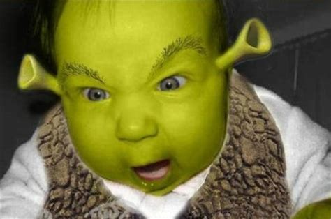 Incoming Baby Meme - hall of shrek the dump spongebuddy mania forums