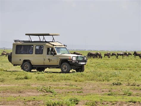 mobile explorer mobile explorer safaris