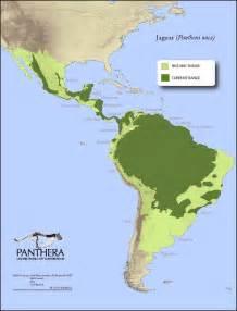 Map Of Jaguar Habitat Stolenshamelessly Current And Historic Jaguar Habitat