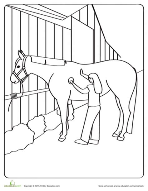 educational horse coloring pages horse coloring pages education com