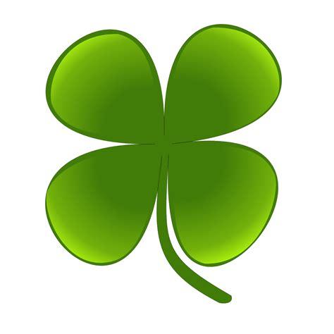 irish green shamrock related keywords shamrock long tail keywords