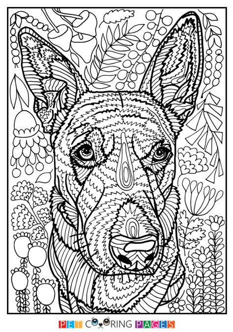 detailed coloring pages of dogs printable coloring pages of pugs detailed coloring pages