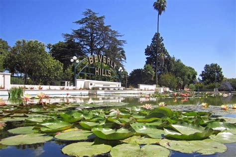 lily pond in beverly gardens park love beverly hills