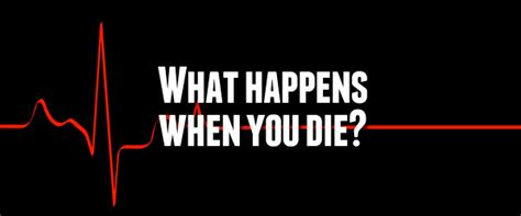 what happens when a dies what happens when you die