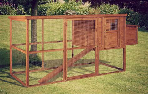 tanto nyam popular best chicken coop design uk