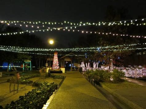 hattiesburg zoo christmas lights road trip to 10 of the most magical christmas displays in