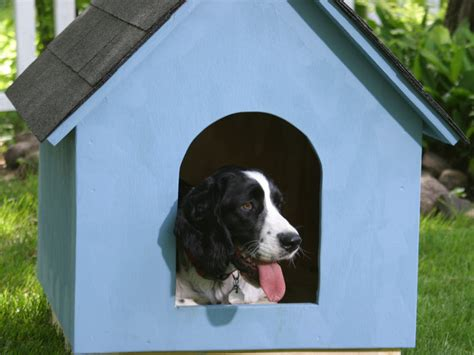 dog house inside how to build a dog house step by step removeandreplacecom party invitations ideas
