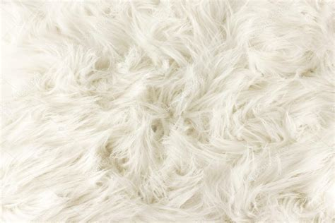 wallpaper atau cat white fur texture close up useful as background stock
