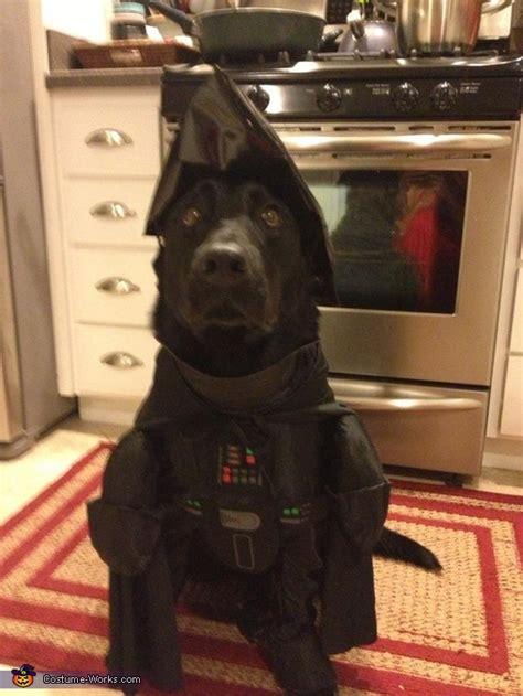 diy darth vader costume  dogs