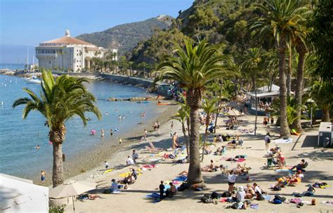 san pedro california boat rides catalina island tours reserve over 50 tours and cruises