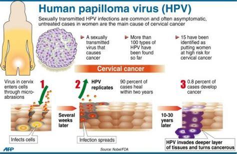 pap test e papilloma virus warts and human papillomavirus hpv