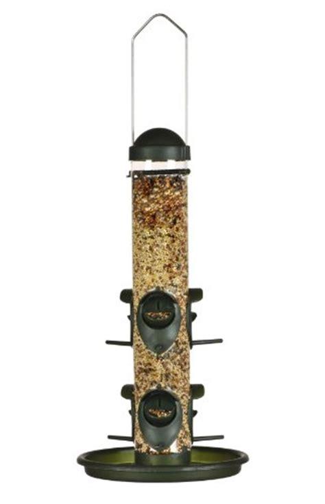 best bird feeding tips for winter