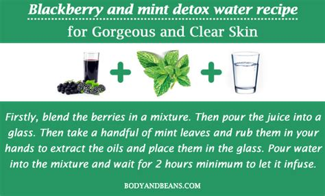 Blackberry Mint Detox Water by 13 Detox Water Recipes To Get Gorgeous And Clear Skin