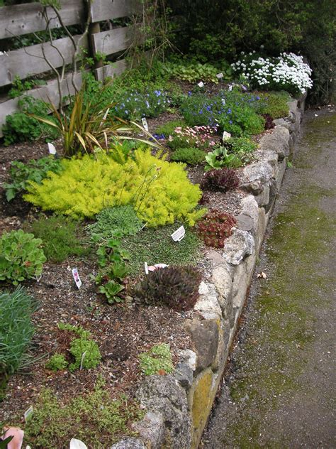 How To Make A Rock Garden From Scratch How To Build A Rock Garden That Bloomin Garden