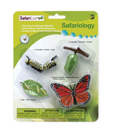 Safari Ltd Cycle Of Mosquito Set safari ltd safariology cycle of a monarch butterfly buy safari ltd safariology cycle