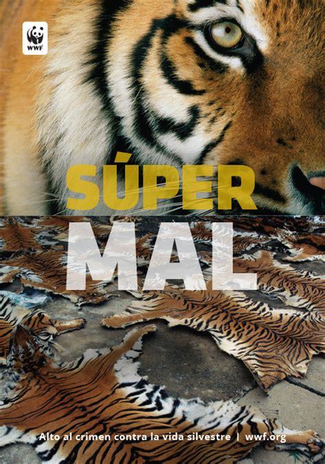 tiger biography in english psa download center