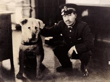 imagenes reales de hachiko hachikō doggy stuff pinterest the originals and