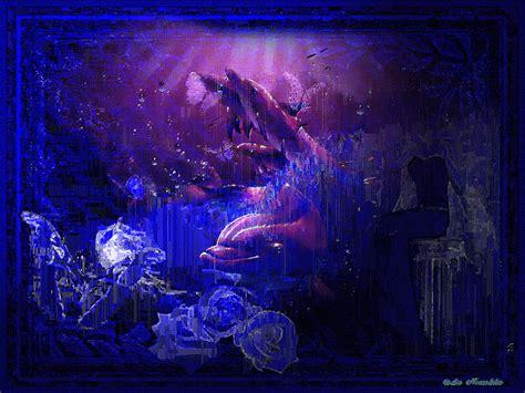 imagenes de unicornios con movimiento imagenes con imaginacion delfines