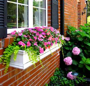 Fall Flowers For Window Boxes - how to hang window boxes the right way