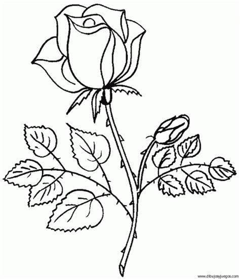 imagenes de rosas chidas imagenes de rosas para dibujar auto design tech