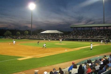 river dogs riverdogs baseball berkeley county