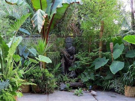 Small Tropical Backyard Ideas Best 25 Small Tropical Gardens Ideas On Tropical Garden Tropical Garden Design And