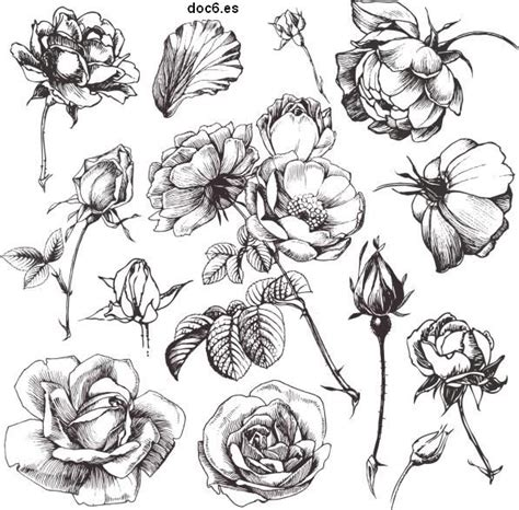 imagenes de flores sombreadas dibujos de flores revista entretiene