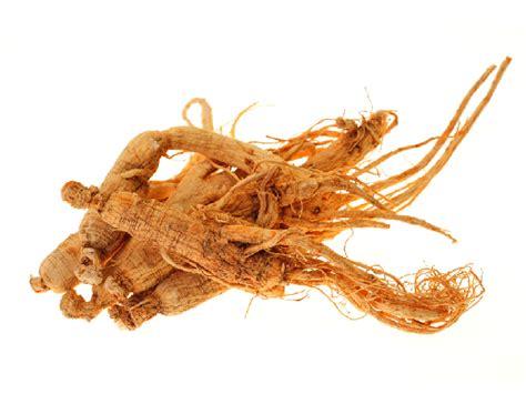 Ginseng Cina herbs to make you energetic boldsky