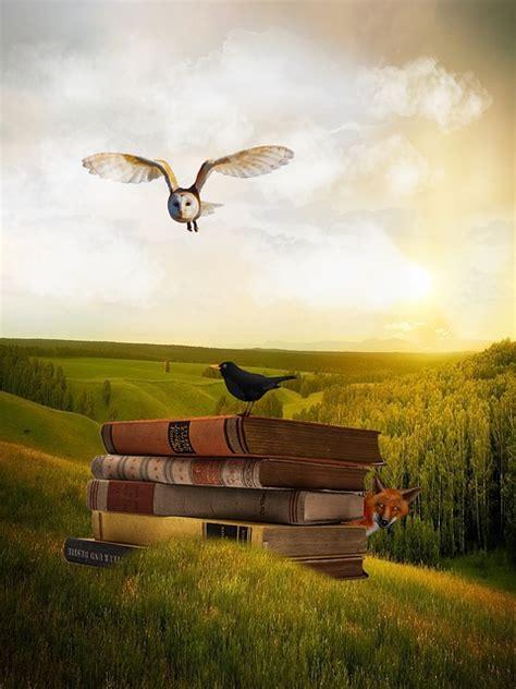 libro spanish nature of photographs ilustraci 243 n gratis b 250 ho libros mirlo paisaje fuchs imagen gratis en pixabay 1240961