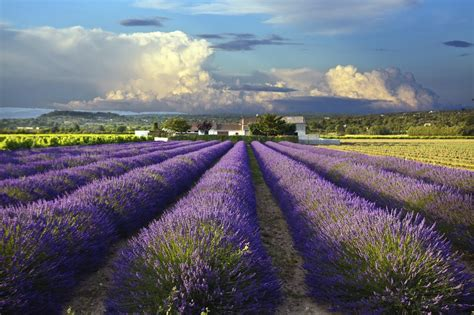 province france demand increases for property for sale in provence